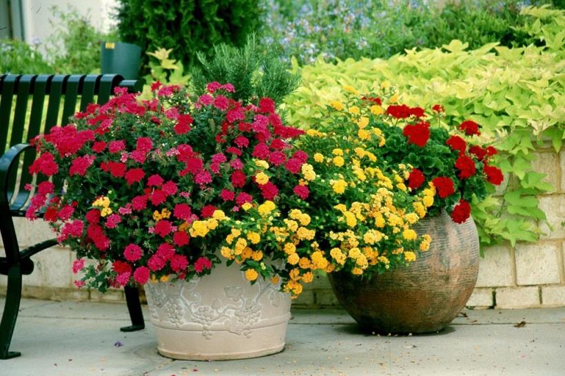 vasos-flores-04